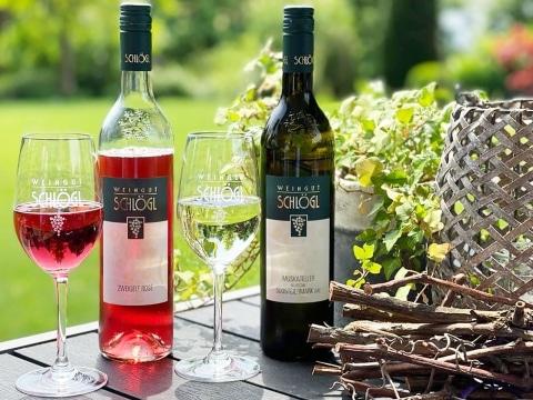 Weingut-Schloegl-Sommerwein-2021